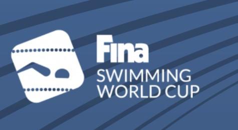 fina world cup logo